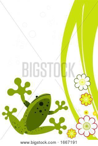 Frog Observer