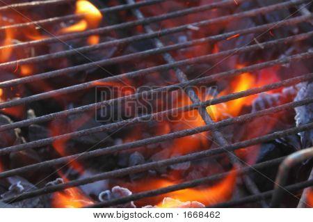 Barbacoa Grill & llamas