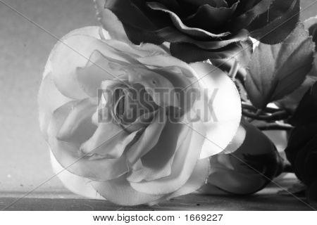 Plastic Rose 2