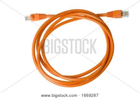 Coiled Network Cable