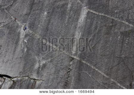 Cerebrus Climbers