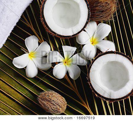 toalla de flores de cocos Spa objetos en la hoja de Palma