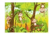 picture of cartoon animal  - Illustration of  a monkey in a jungle - JPG