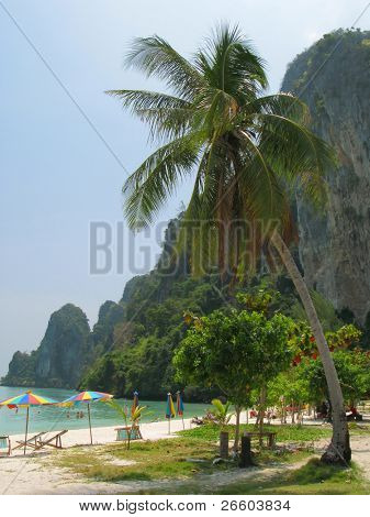 Tropical beach of Phi-Phi island, Thailand