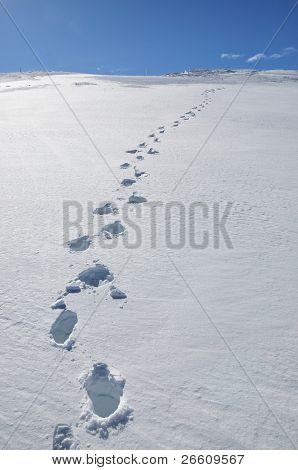 Pasos en la nieve. Pizol, Alpes suizos