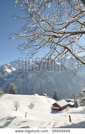 Paisajes alpinos, Braunwald, Suiza