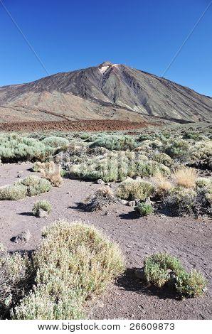 Teide volcano. Tenerife, Canaries