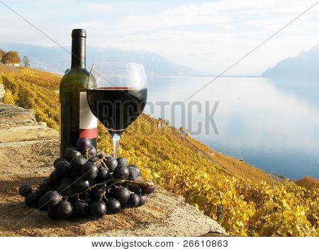Glass of red wine on the terrace vineyard in Lavaux region, Switzerland