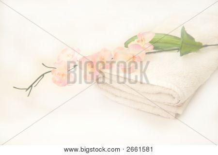 Delicate Floral Bath Time