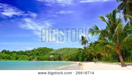 Tropical paradise beach - palm tree, sand for game child, silence for family, sea for swimming