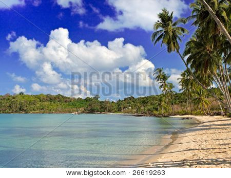 Family hotel beach on the wind tropical island, sea water, white sand  and sky background