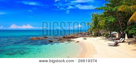 Panoramic tropical beach with palm in family hotel
