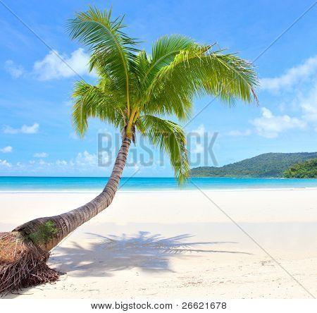 Strandszene auf einer schönen Insel