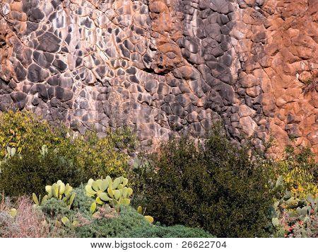 Rocky side of columnar basalt