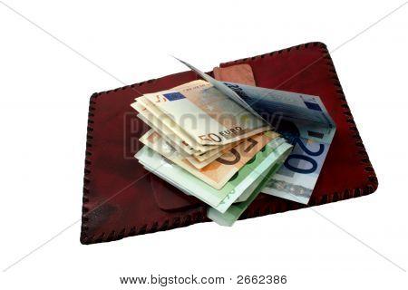 Purse And Euro