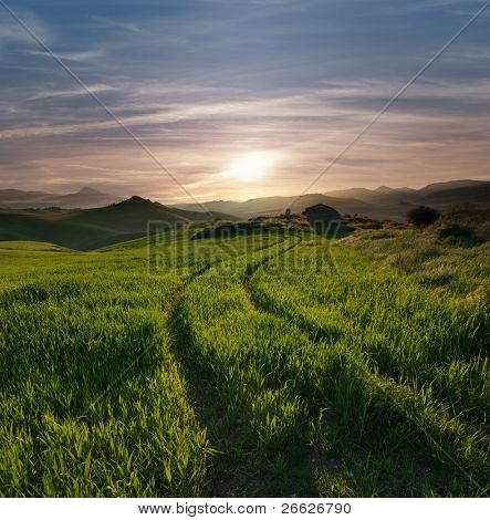 tracks of tractor crossing a green grass with a abandoned hut against overcast sky at the sunset and the hilly horizon misty