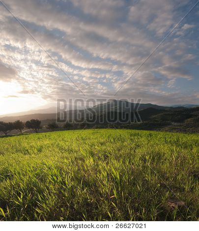 the sun is setting on a field of grass on a hilly background with a cloudy sky