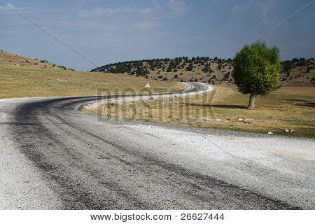 a winding road crosses a bare area with a lone tree in the plateau central Turkey