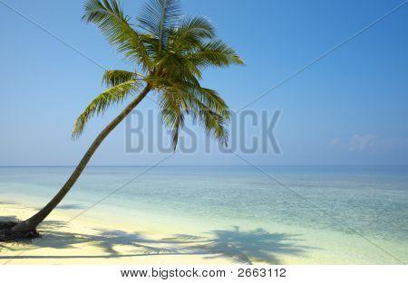 Gentle Seascape