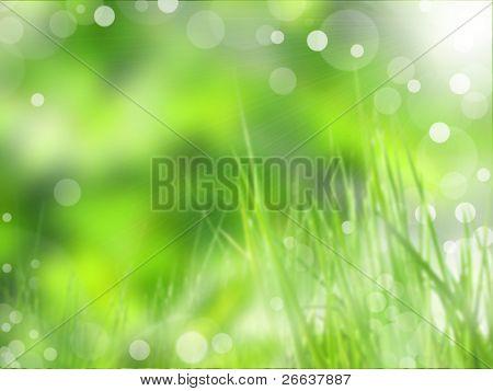 Desenfoque de fondo brillante hierba