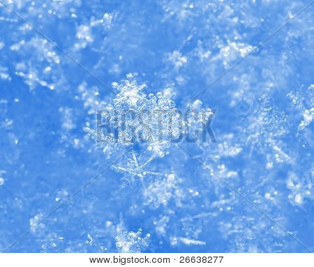 blue glitter sparkles snow flakes background , macro shot, shallow DOF