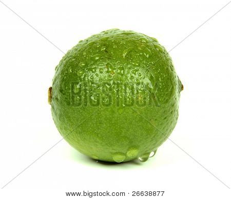 Dewy lime, isolated on white background