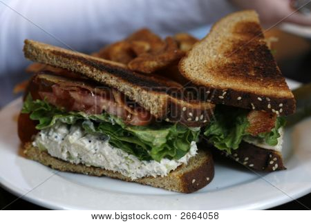 Chicken Salad Sandwich B