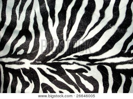 Zebra pattern for background