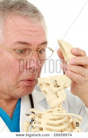 Man looking into the skull