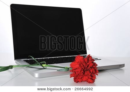 Rosa roja en portátil