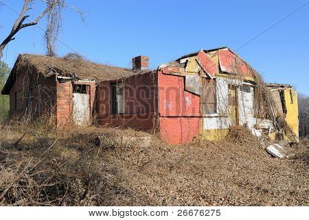 A dilapidated residential house covered in winter vines.
