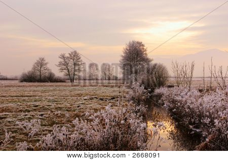 Frozen Countryside
