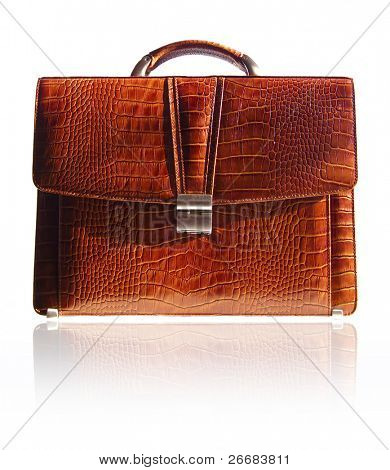 Brown suitcase from crocodile skin isolated in white