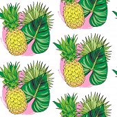 Vector Hand Drawn Abstract Tropical Seamless Pattern Of Exotic Fruit Pineapple And Leaves. Ananas Il poster