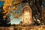 Old Tombstone Next To A Big Tree In Autumn Cemetery. Fall Foliage And Fallen Leaves On The Ground. V poster