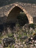 picture of saracen  - old stone bridge with the main gothic on the Simeto river - JPG