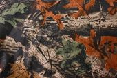 pic of camo  - Camouflage background - JPG