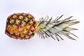 Whole Ripe Pineapple On Light Background. Flat Lay Green Ananas On Grey Background. Delicious Tropic poster