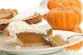 pic of pumpkin pie  - piece of pumpkin pie ready to be eaten - JPG
