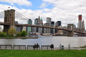 stock photo of brooklyn bridge  - View of Manhattan and Brooklyn Bridge from a Park in Brooklyn with park goers on the benches - JPG