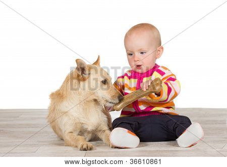 Little Baby Offering The Dog A Bone