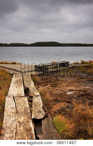 Timber Road, Bench And Lake In Marsh