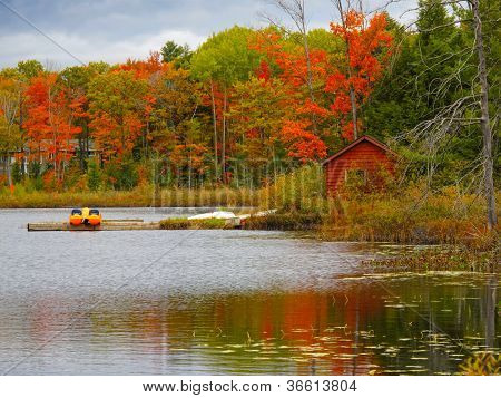 Landscape With Red Cabin