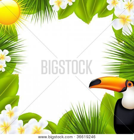 Green Frame With Tropical Elements, Isolated On White Background, Vector Illustration