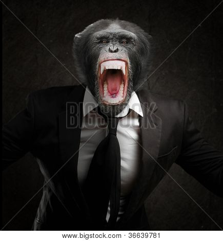 Frustrated Monkey In Business Suit Isolated On Black Background