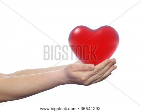 High resolution concept or conceptual 3D red glass heart held in hands by a woman isolated on white background for date,emotion,love,valentine,wedding,feeling,gift,care,passion,protect or relation