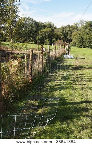Laying out stock fencing