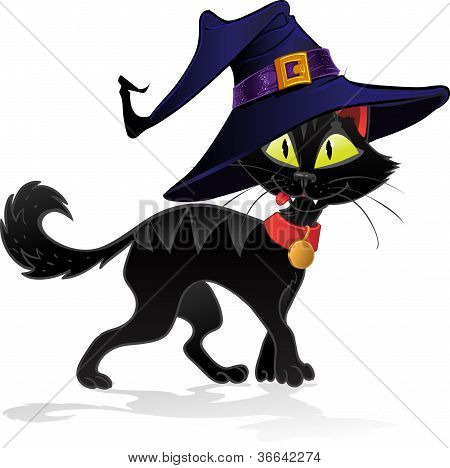 Black terrible witch Halloween cat