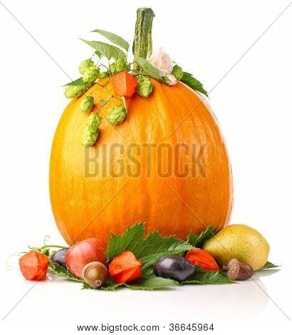 Pumpkin With Fruits And Flower