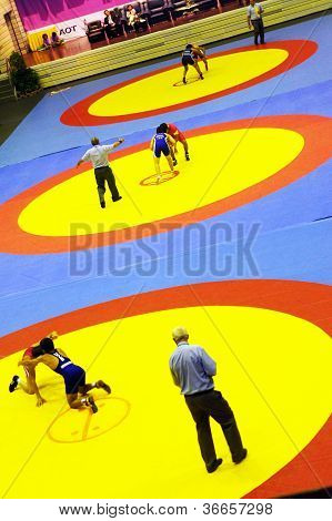Asian cadet  wrestling championship 2011, 4-7